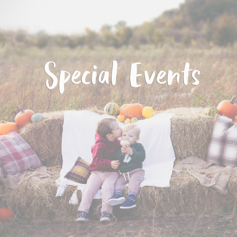 Special Event Sessions Lucy Wilson Photography